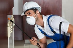 Pest worker using sprayer on cabinets in kitchen at home