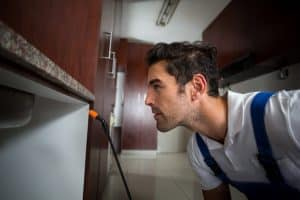 A worker spraying conducting some pest control