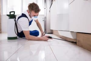 A worker conducting some pest control in a bathroom